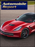 Automobile Report 1-2013