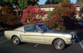 1965 Ford Mustang Fastback är idag nästan lika dyr som Mustang Convertible. Här är det mer skicket som avgör!
