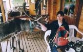 Fransyskan Francoise Privat får påhälsning av en ren i Mittådalens sameby i Härjedalen. Ett av många exotiska inslag som norra Sverige bjuder de utländska deltagarna på.