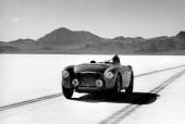 Snart blev Austin-Healey 100 en vanlig syn på motortävlingar.