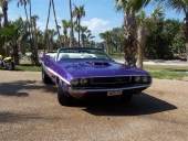 1970 Dodge Challenger Convertible under Florida´s glödande sol!